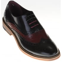 Black Brogue with Wine Suede Inserts
