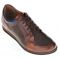 Brown Casual Laced Shoe with Blue Trim